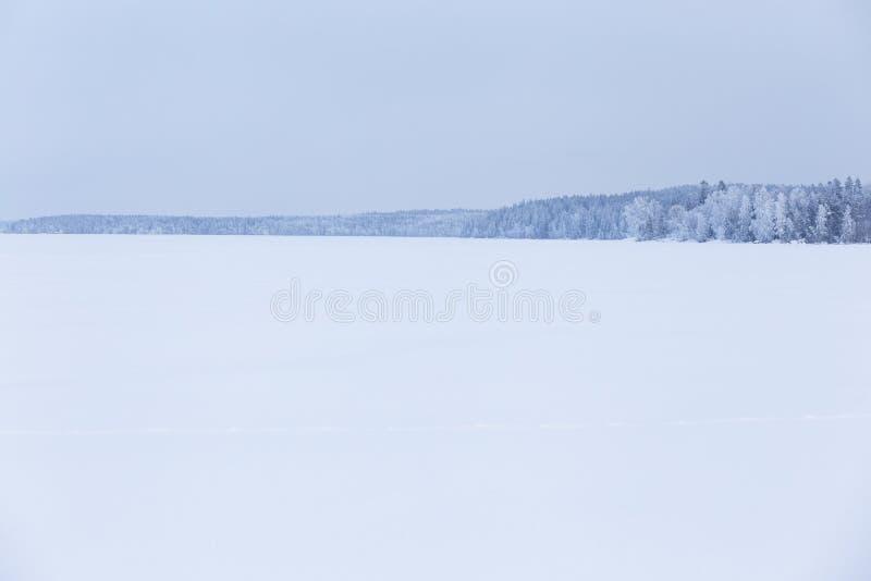 Zima dnia jeziora chmurny krajobraz fotografia royalty free