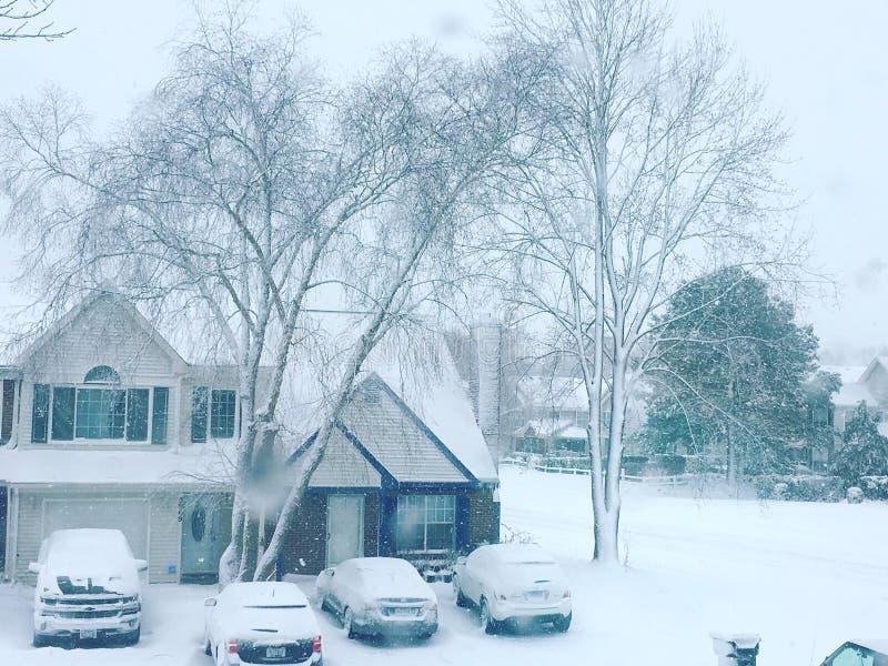 Zima domy I drzewa zdjęcie royalty free