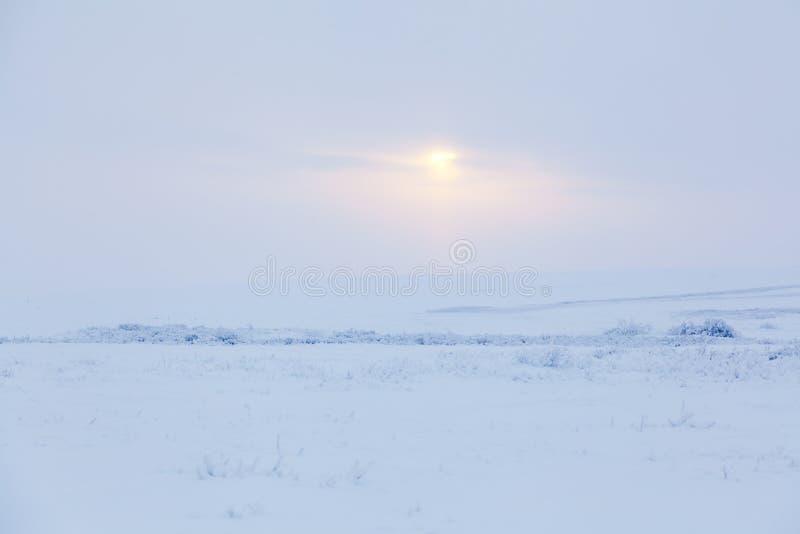 Zima dzień obrazy stock
