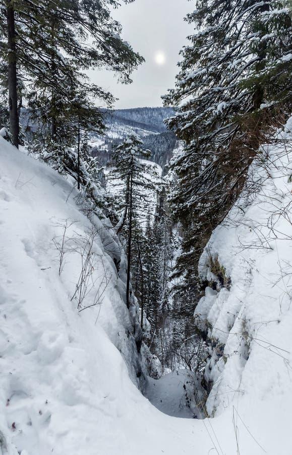 Zima dzień na skałach zdjęcia royalty free