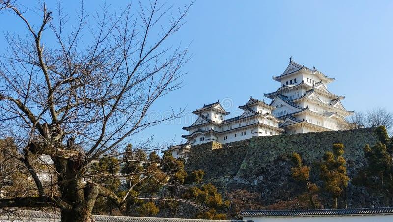 Zima dzień przy Himeji kasztelem obrazy royalty free
