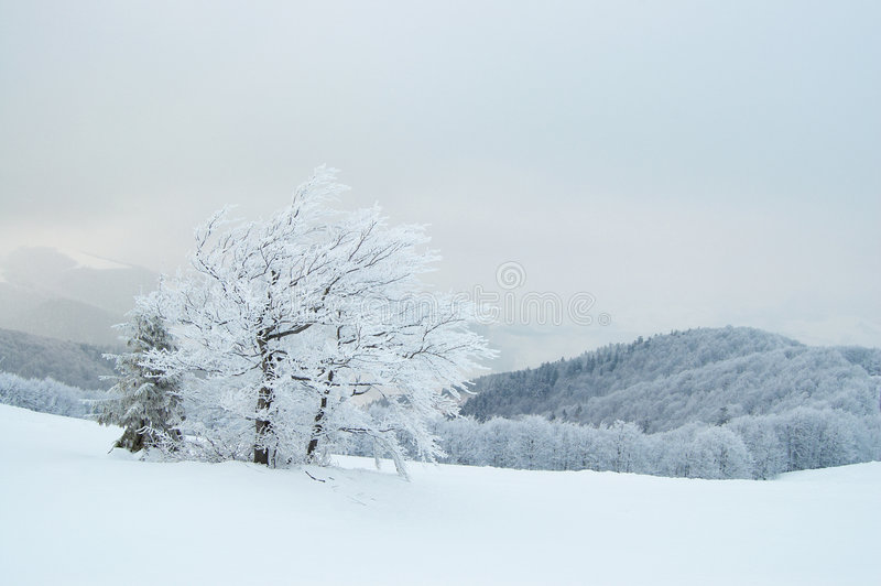 Zima góry fotografia stock
