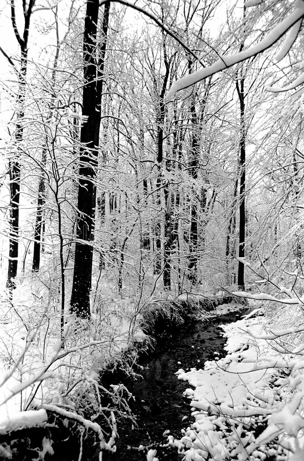 zima glover park fotografia royalty free