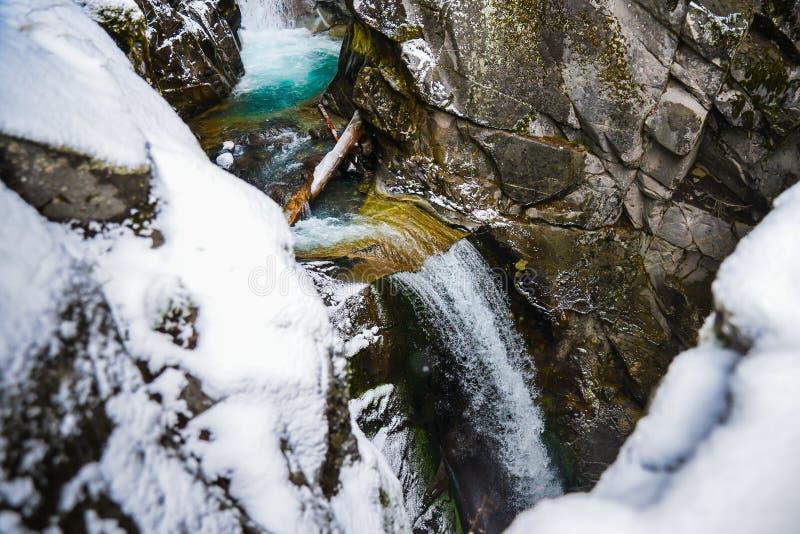 Zima i śnieg sceneria przy góra Dżdżystym parkiem narodowym, raj obrazy stock