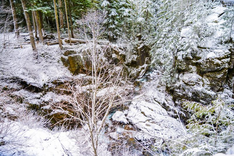 Zima i śnieg sceneria przy góra Dżdżystym parkiem narodowym, raj obraz royalty free