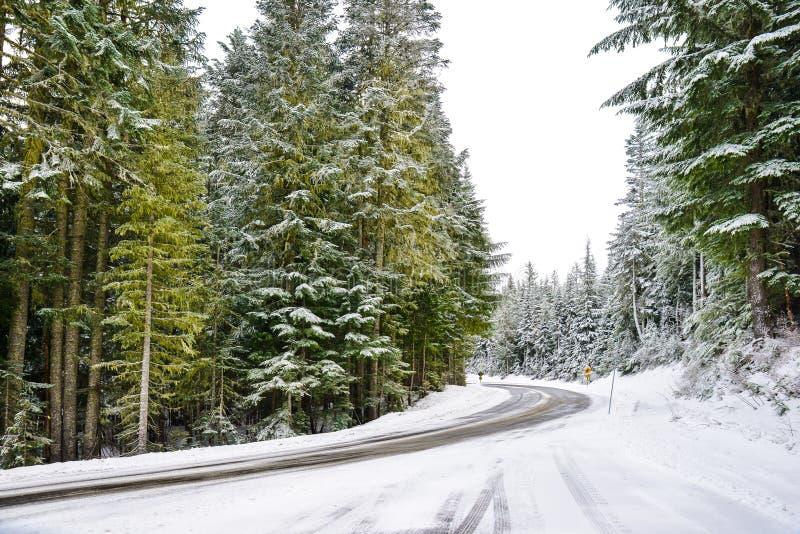 Zima i śnieg sceneria przy góra Dżdżystym parkiem narodowym, raj zdjęcie stock