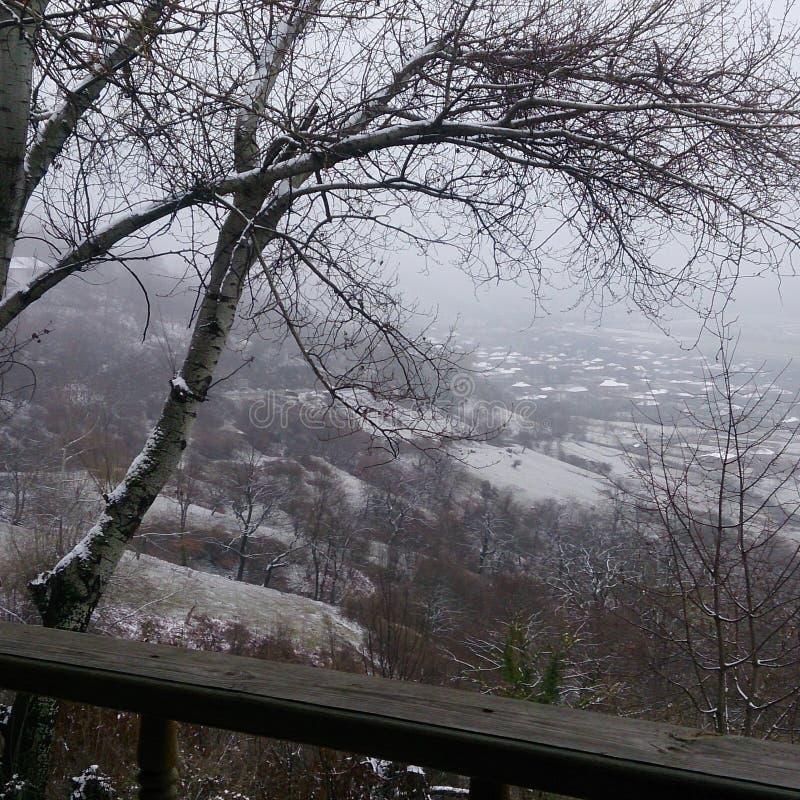 Zima i zimno zdjęcia royalty free