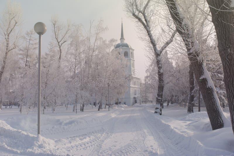Zima kościół z drzewo zakrywającym śniegiem Bielu mrozu parka krajobraz zdjęcia stock