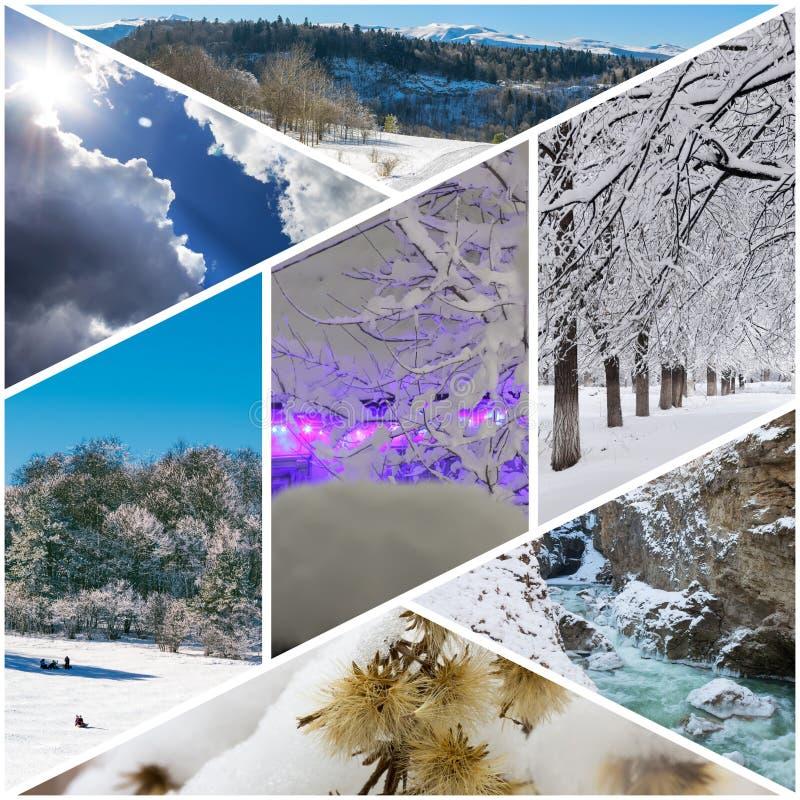 Zima kolaż fotografie wioska dom w bożonarodzeniowe światła, saneczkowań dzieci, zima las, suszy kwiaty pod śniegiem, mounta zdjęcie stock