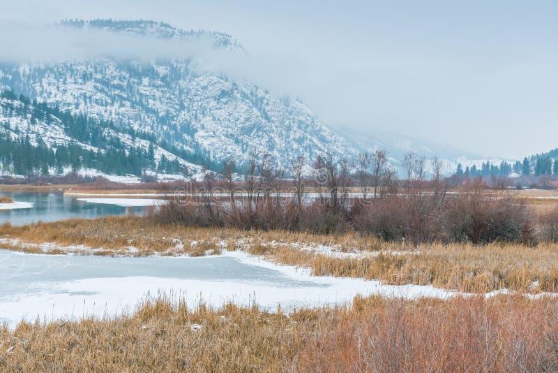 Zima krajobraz śnieg zakrywał bagna siedlisko z górami i mgłą zdjęcie royalty free