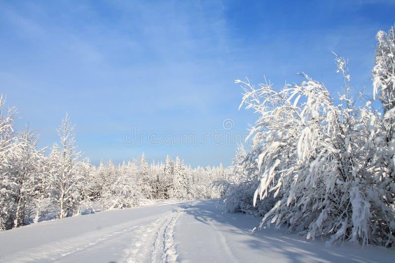 Zima krajobraz - biel i błękit zdjęcie stock