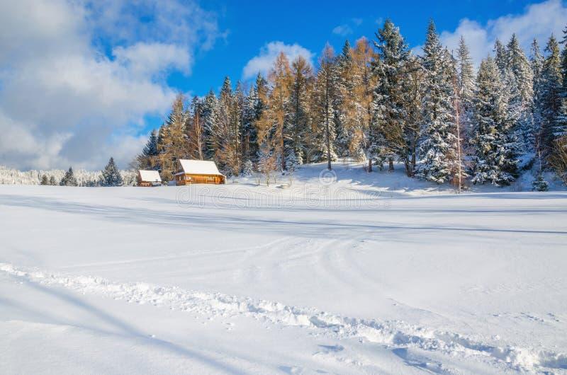 Zima krajobraz daleka wioska zakrywający śnieg obraz stock