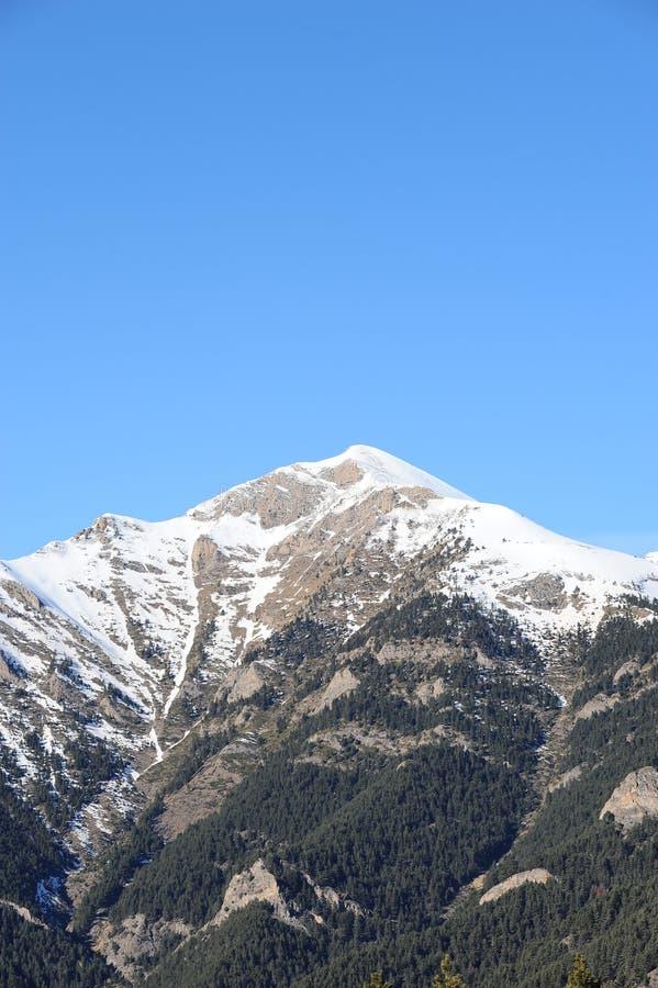 Zima krajobraz góra zakrywająca z śnieżnym i porosłym z jedlinowymi drzewami przeciw niebieskiemu niebu - ksiąstewko Andorra, Pyr obrazy royalty free