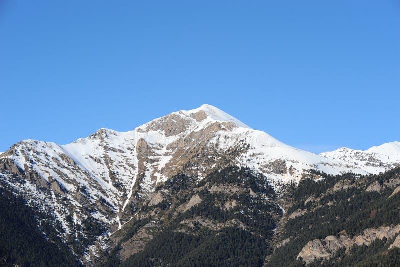Zima krajobraz góra zakrywająca z śnieżnym i porosłym z jedlinowymi drzewami przeciw niebieskiemu niebu - ksiąstewko Andorra, Pyr zdjęcie royalty free