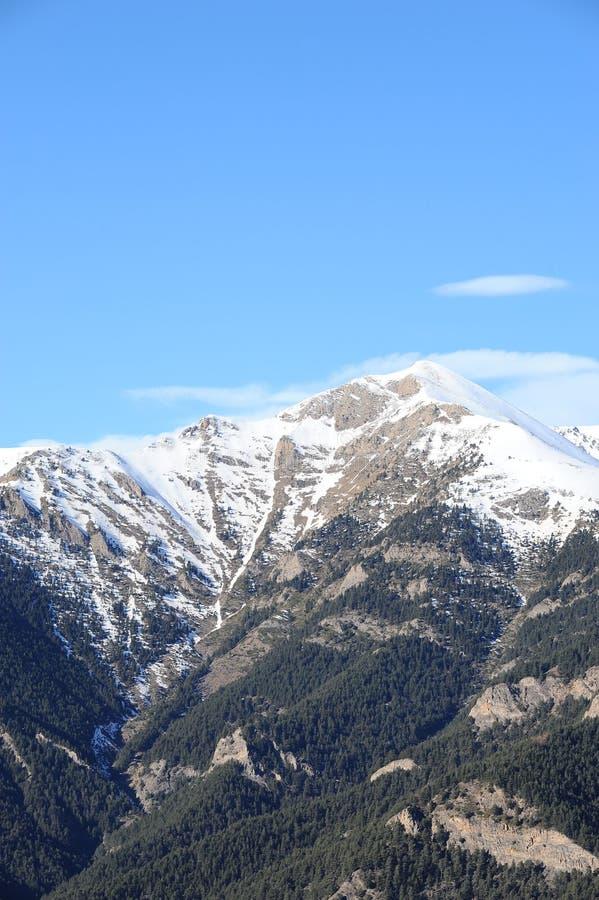 Zima krajobraz - góry zakrywać z śnieżnymi i jedlinowymi drzewami w ksiąstewku Andorra wschodni Pyrenees, Europa sec obrazy stock