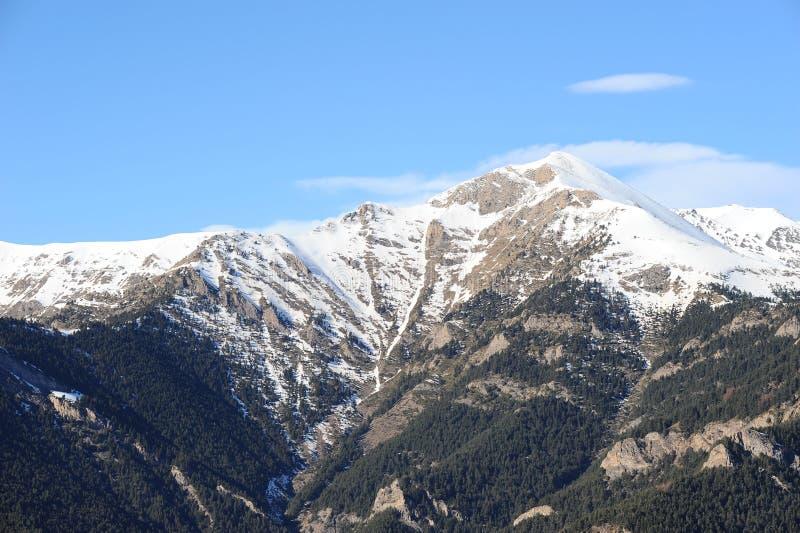 Zima krajobraz - góry zakrywać z śnieżnymi i jedlinowymi drzewami w ksiąstewku Andorra wschodni Pyrenees, Europa sec zdjęcia stock