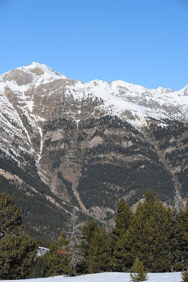 Zima krajobraz ksiąstewko Andorra, Pyrenees, Europa - szczyt góra zakrywająca z śnieżnym i porosłym z jedlinowymi drzewami - obraz royalty free