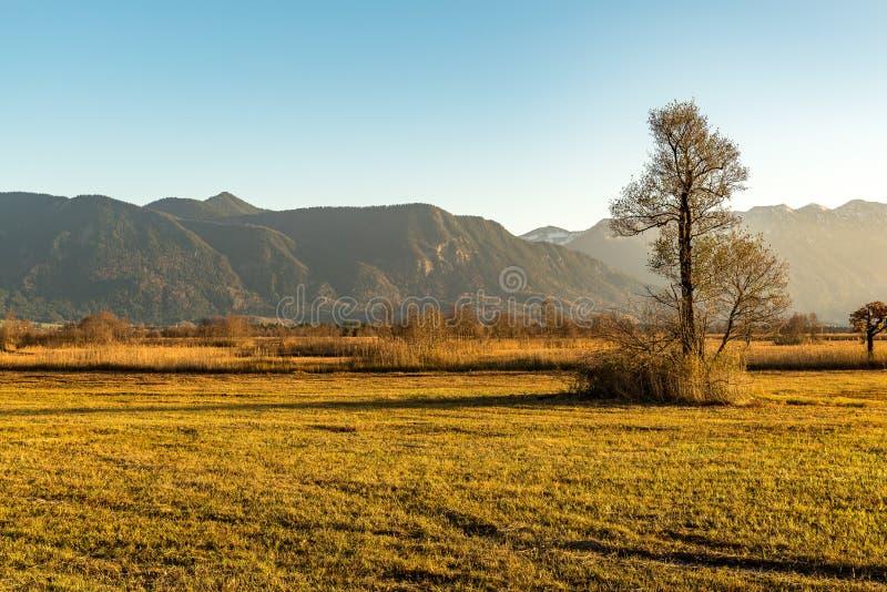 Zima krajobraz Murnauer muczenia zdjęcia royalty free