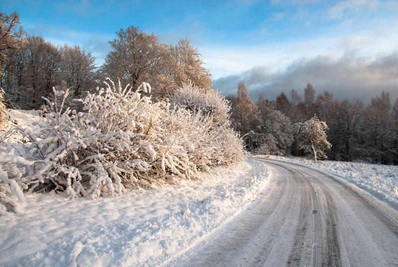Zima krajobraz na zachodnim wybrzeżu w Szwecja fotografia stock