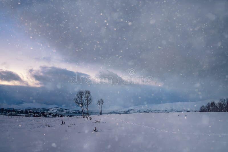 Zima krajobraz p??nocny Norwegia fotografia royalty free