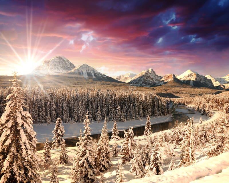 Zima krajobraz, Skaliste góry, Alberta, Kanada fotografia stock