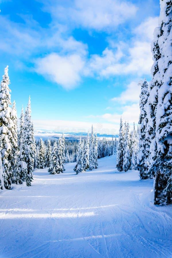 Zima krajobraz w górach pod pięknymi niebami zdjęcie royalty free