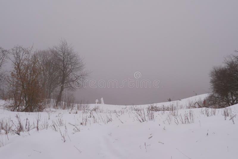 Zima krajobraz w mgle zdjęcia stock