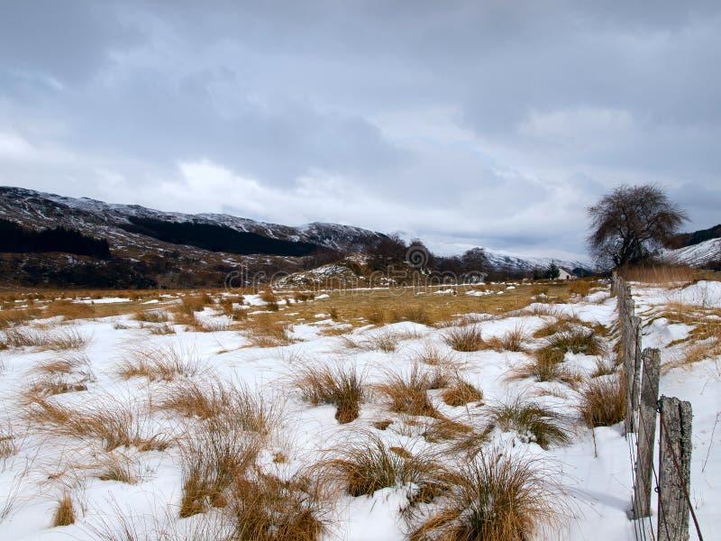 Zima krajobraz w Szkocja obrazy royalty free