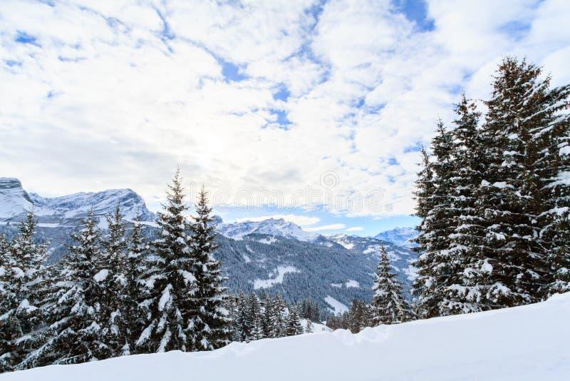 Zima krajobraz w Szwajcaria zdjęcia royalty free