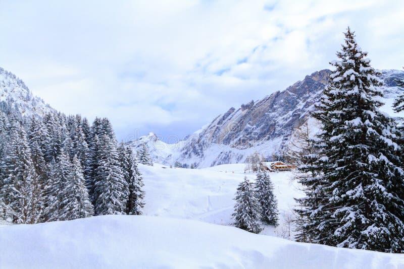 Zima krajobraz w Szwajcaria obraz royalty free