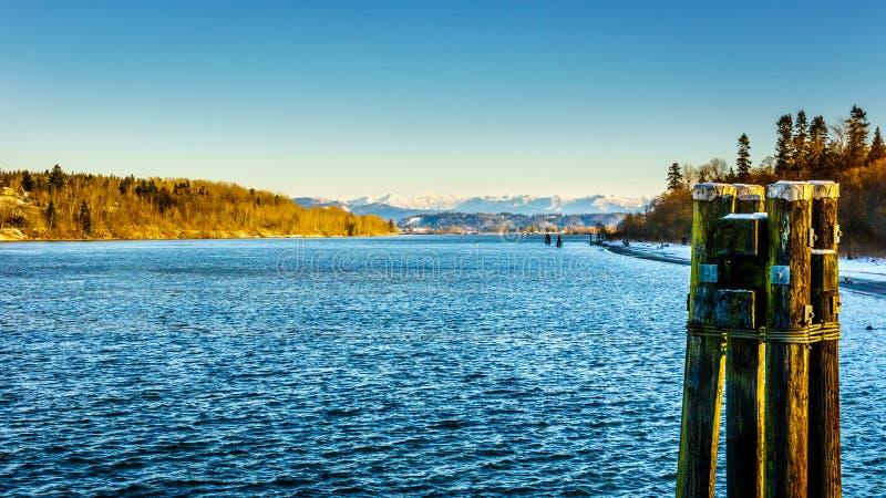 Zima krajobraz wzdłuż Fraser rzeki blisko historycznego miasteczka fort Langley obrazy stock