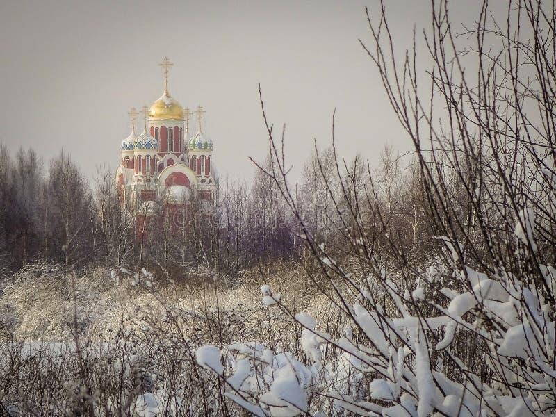 Zima krajobraz z pierwszy śniegiem w Środkowym Rosja fotografia royalty free