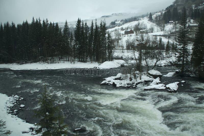 Zima krajobraz z rzecznymi gwałtownymi fotografia royalty free