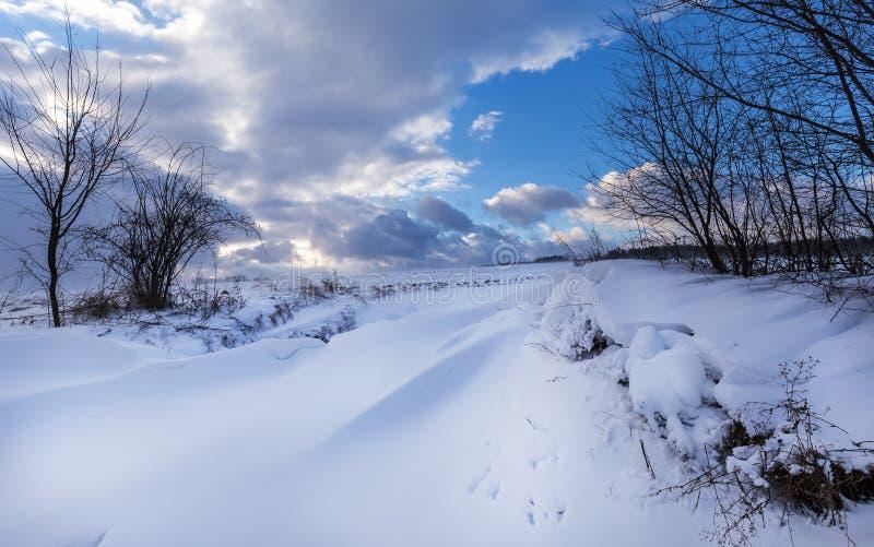 Zima krajobraz zakrywający z śnieżnymi i zwartymi chmurami zdjęcia stock