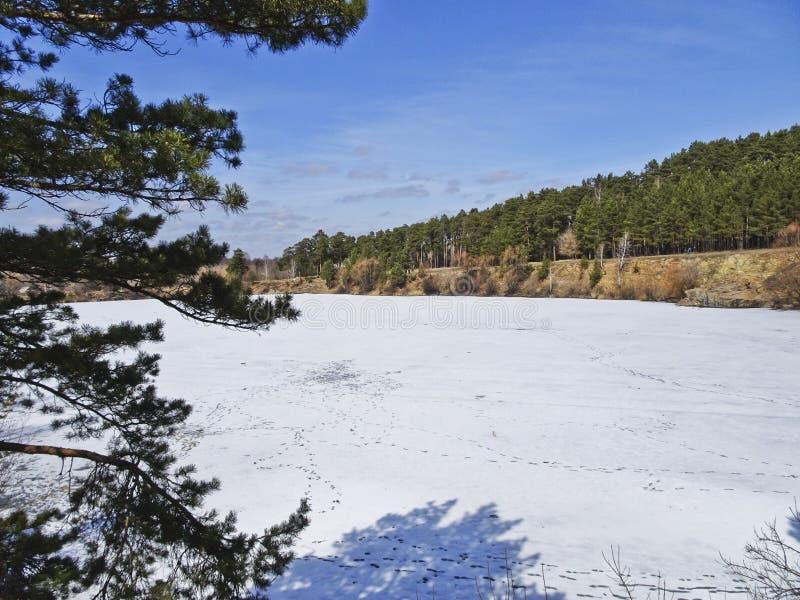 Zima krajobraz - zamarznięty i śnieżysty łup obrazy royalty free
