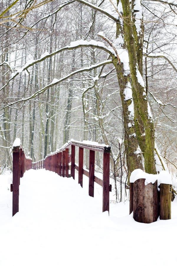 Zima las i drewniany most zdjęcia stock