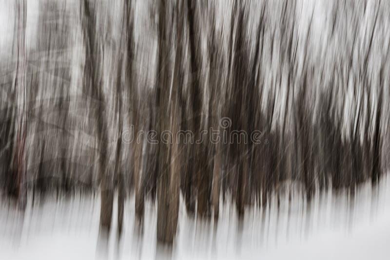 Zima lasu abstrakt zdjęcia stock