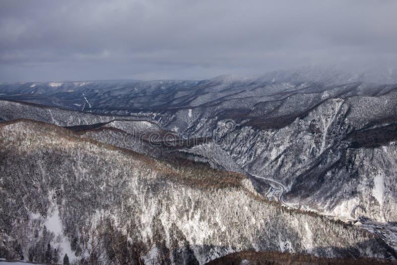 Zima lasu krajobrazu widok od góry Kurodake zdjęcie stock
