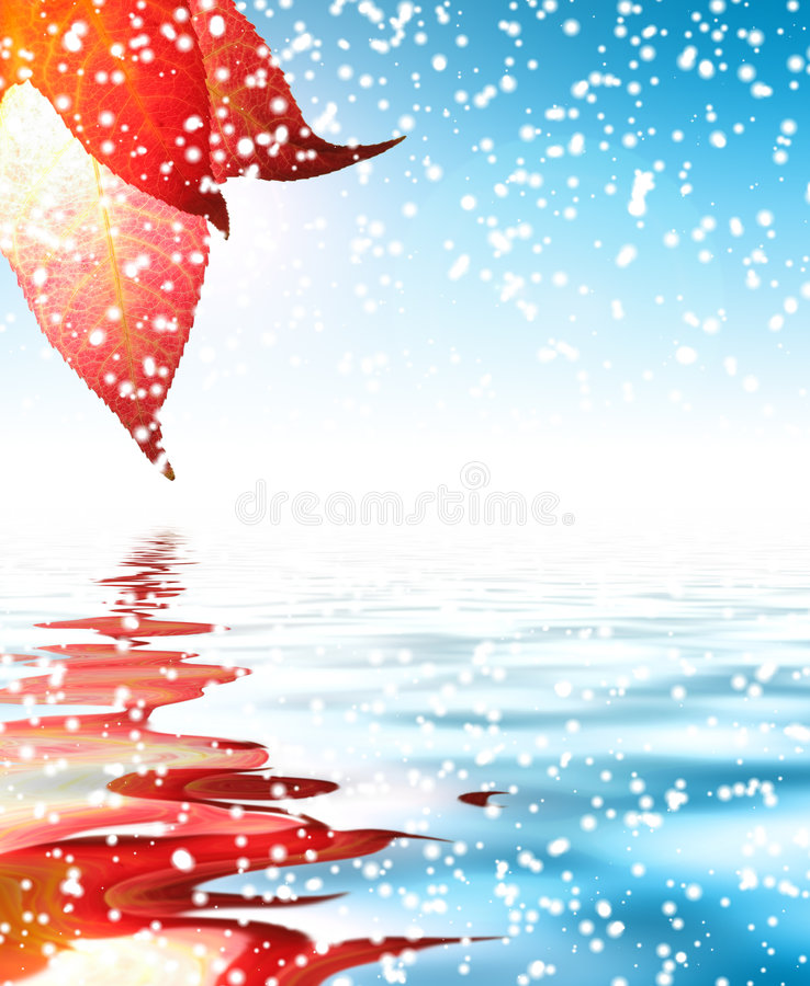 zima liści śniegu obrazy royalty free