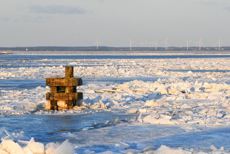 Zima Marznący morze obrazy royalty free