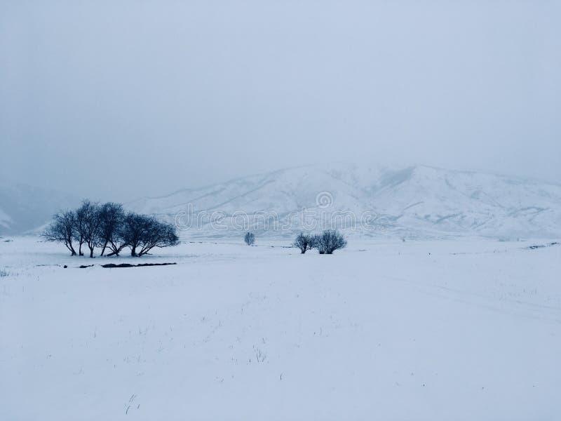 Zima medytacyjny krajobraz obrazy royalty free