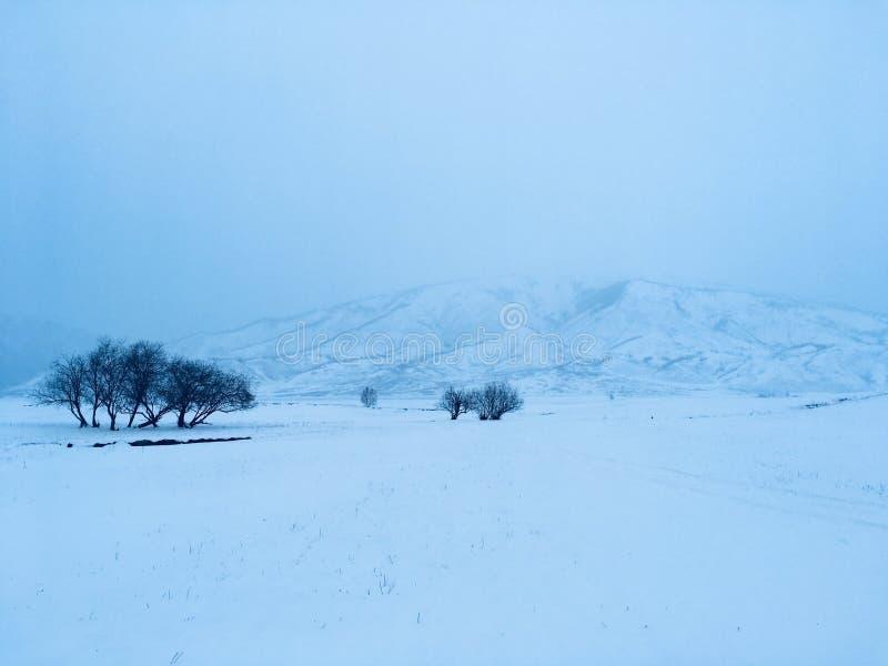 Zima medytacyjny krajobraz obrazy stock