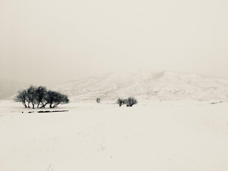 Zima medytacyjny krajobraz fotografia stock