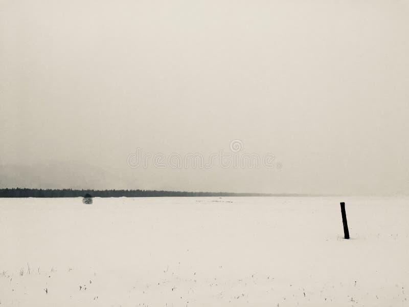 Zima medytacyjny krajobraz zdjęcia royalty free