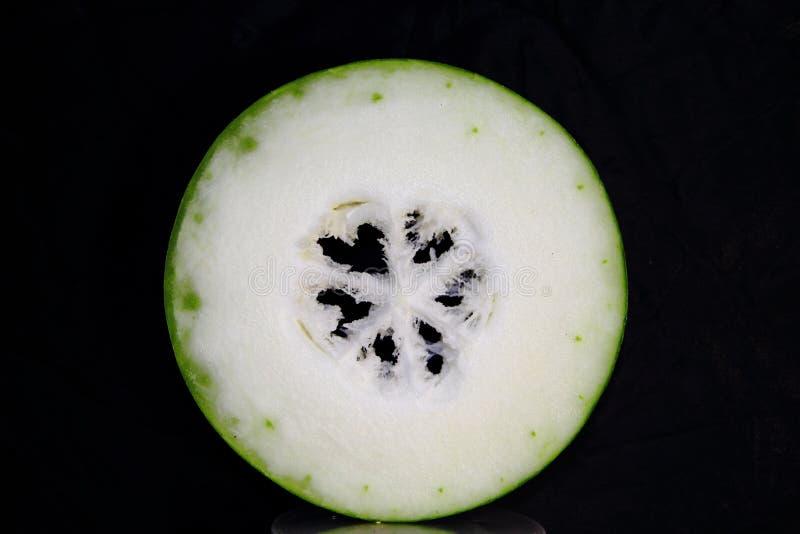 Zima melon zdjęcie royalty free
