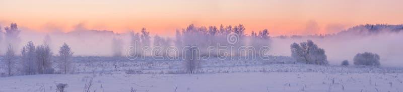 Zima mgłowy wschód słońca zdjęcie stock