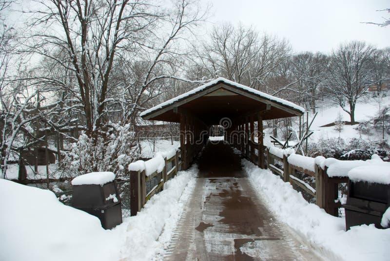 Zima most zakrywający w śniegu na zimnym dniu zdjęcie royalty free
