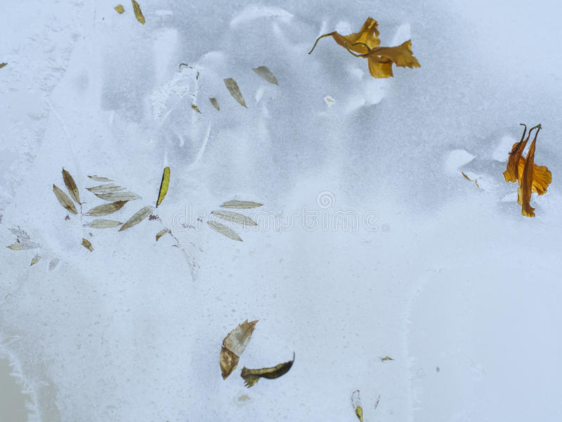 Zima motyw obraz stock