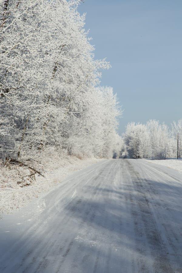 Zima mróz zdjęcie stock