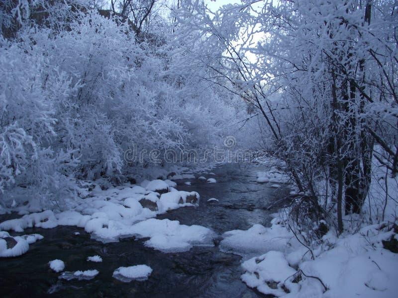 Zima na rzece fotografia stock